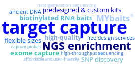 MYbaits target enrichment word cloud
